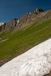 Schneereste neben zart blühender Wiese etwas oberhalb der Passhöhe