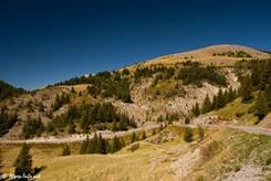 Ausblick vom Col de la Couillole Richtung der Straße zur Passhöhe aus westlicher Richtung