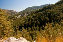 Etwas entfernt von der Passhöhe des Col de Toutes Aures hat man von einem Waldweg diesen Ausblick