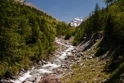 Der Oberlauf des Flusses Guil in Frankreich mit dem Gipfel des Monte Viso auf italienischer Seite im Hintergrund